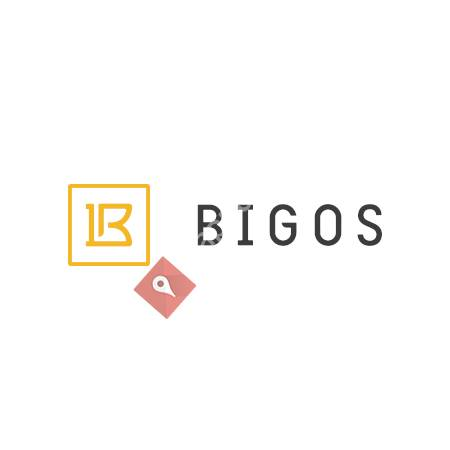 Bigos Management, Inc.